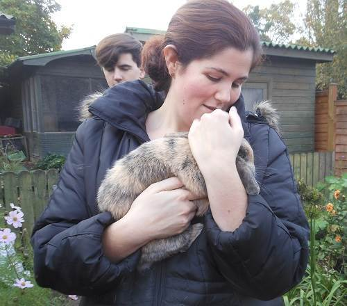 a guest holds a min lop rabbit at the petting day to raise money for Porridge and Rice